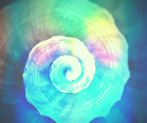 Einweihung, Fern, energie, Spirit, Kornblume