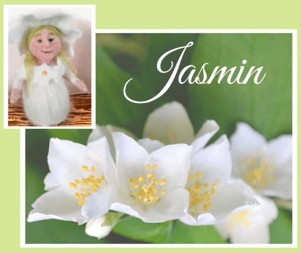 Jasmin, Einweihung, Spirit